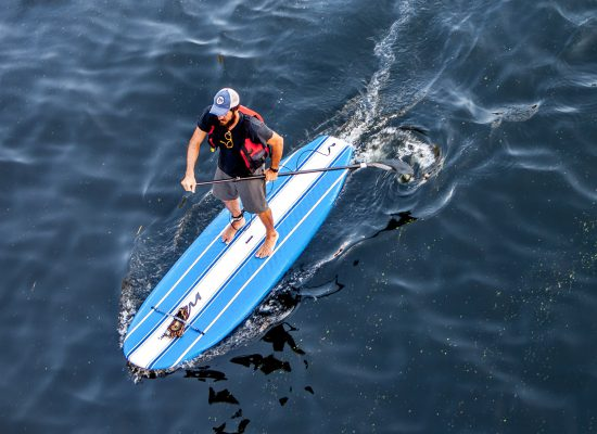 expensive paddle board