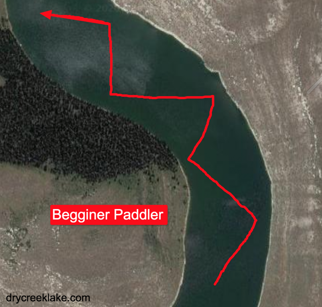 Biginner Paddle Boarder Water Path